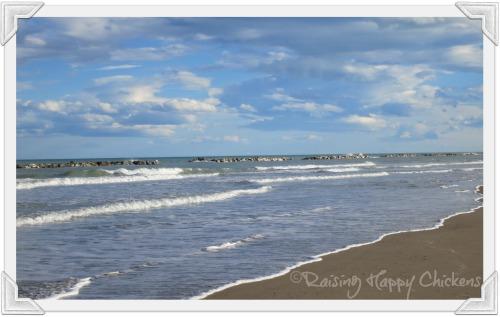 The beautiful coast of Le Marche